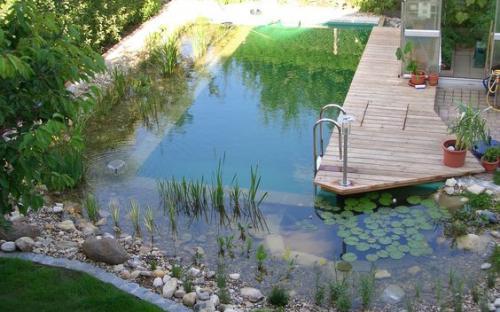 садовий ставок для купання, Автор:First Last